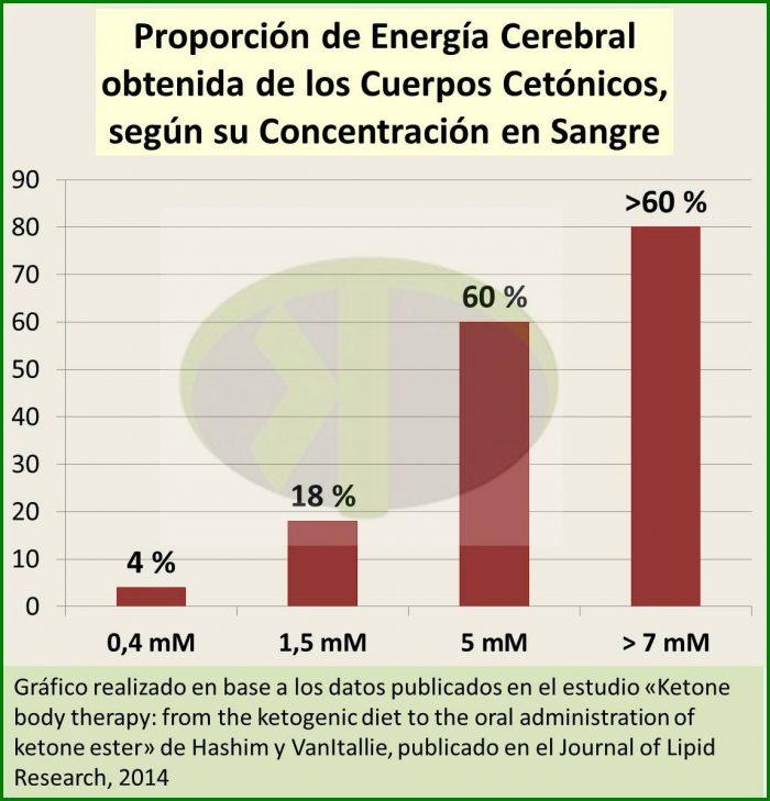 Proporción de energía obtenida por el cerebro a partir de los cuerpos cetónicos, en función de la concentración de los cuerpos cetónicos en sangre