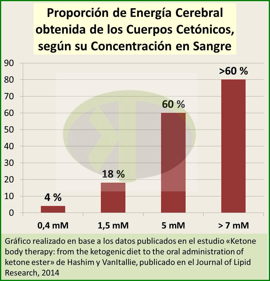 cetogénesis diabetes tipo 2